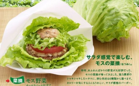 Fantastic Fast Food Items Sold Only in Japan